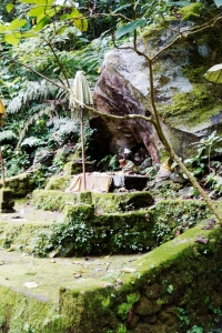 This old shrine is covered in moss, faithfully tended to every day