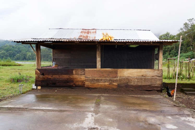 After the wind...kitchen rebuilt with a seating area for Ketut's guests